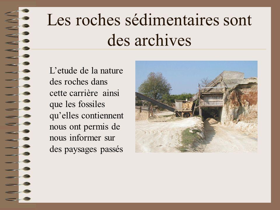 Les roches sédimentaires sont des archives
