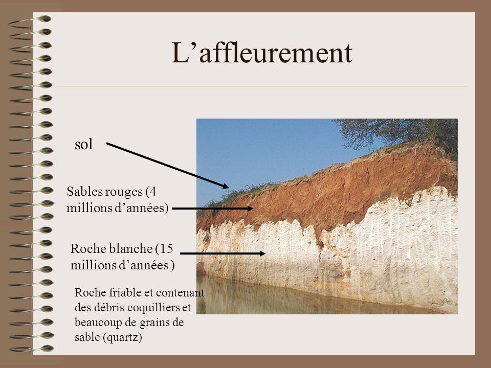L'affleurement sol Sables rouges (4 millions d'années)