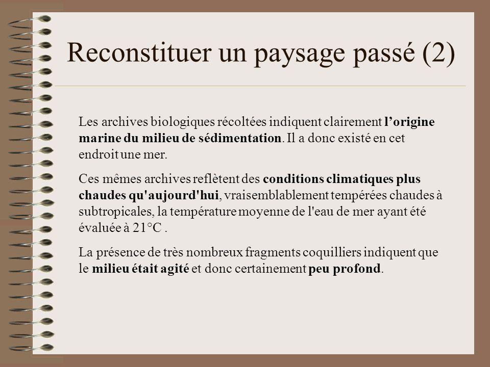 Reconstituer un paysage passé (2)