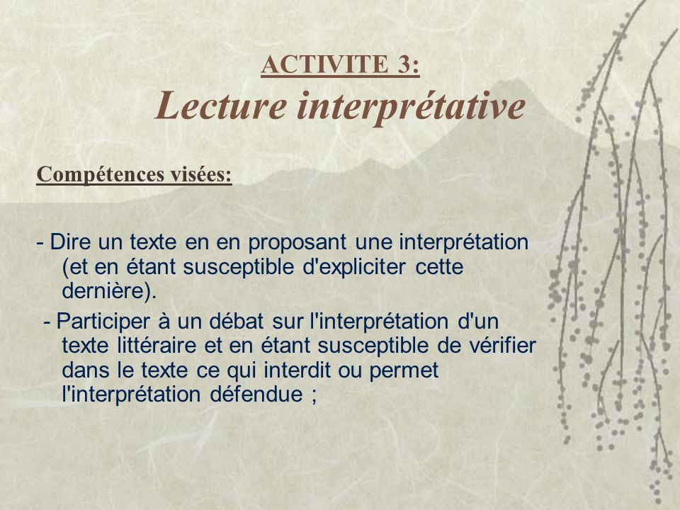 ACTIVITE 3: Lecture interprétative