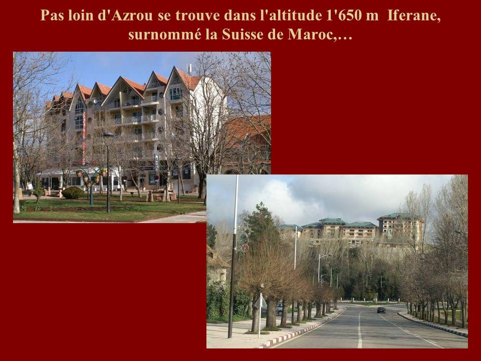 Pas loin d Azrou se trouve dans l altitude 1 650 m Iferane, surnommé la Suisse de Maroc,…