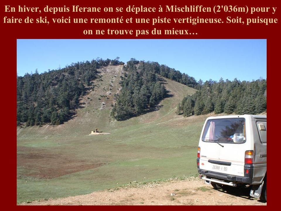 En hiver, depuis Iferane on se déplace à Mischliffen (2 036m) pour y faire de ski, voici une remonté et une piste vertigineuse.