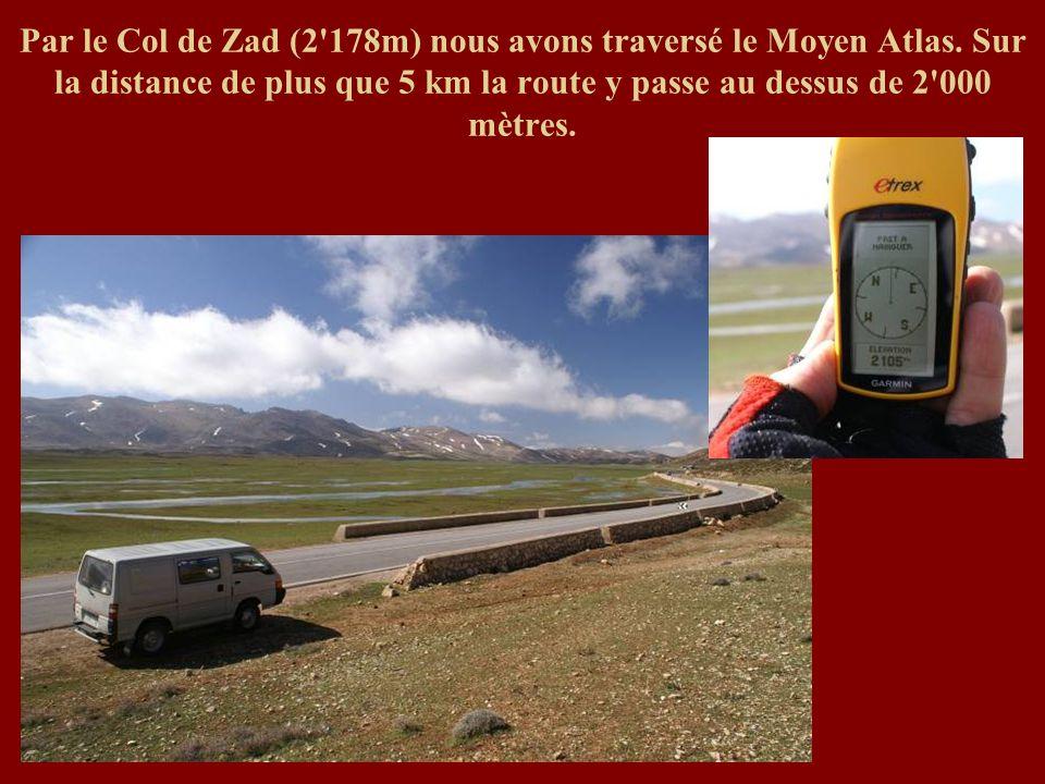 Par le Col de Zad (2 178m) nous avons traversé le Moyen Atlas