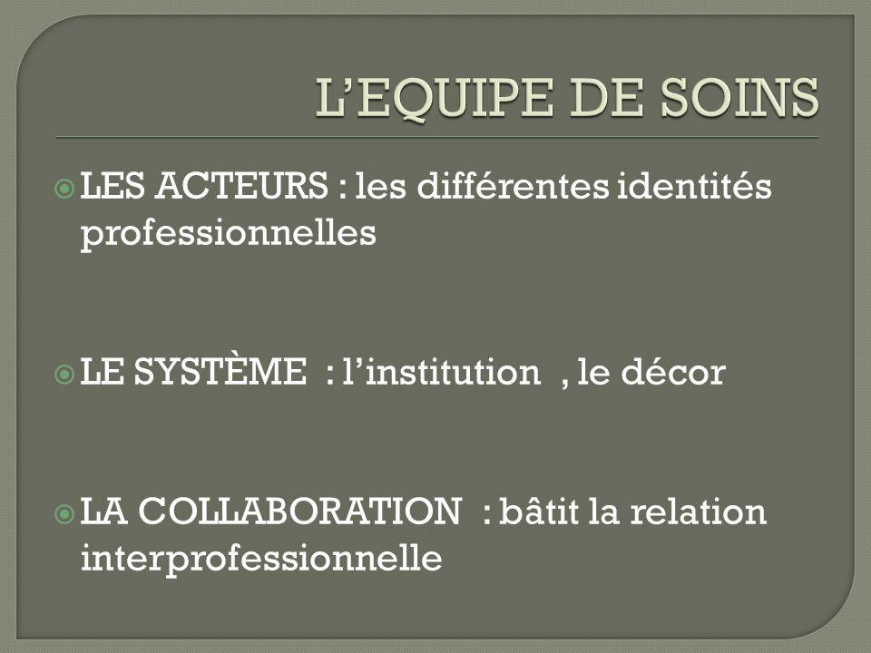 L'EQUIPE DE SOINS LES ACTEURS : les différentes identités professionnelles. LE SYSTÈME : l'institution , le décor.