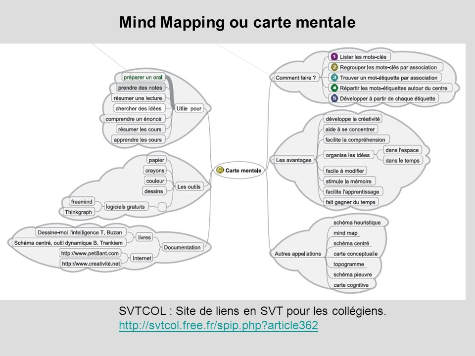 Mind Mapping ou carte mentale