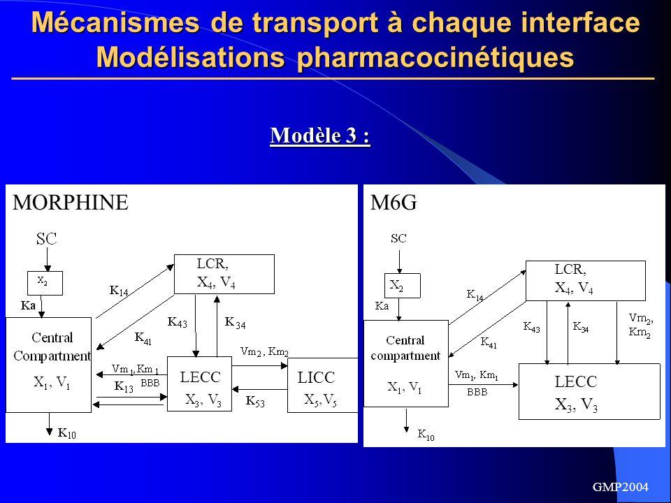 Mécanismes de transport à chaque interface Modélisations pharmacocinétiques