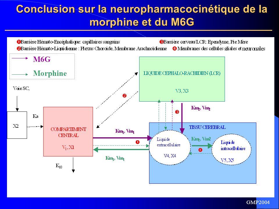 Conclusion sur la neuropharmacocinétique de la morphine et du M6G