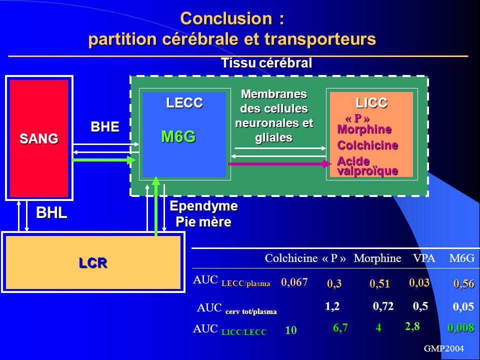 partition cérébrale et transporteurs