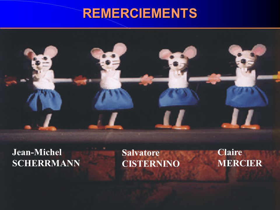 REMERCIEMENTS Jean-Michel SCHERRMANN Salvatore CISTERNINO