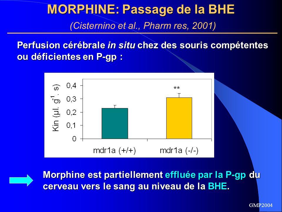 MORPHINE: Passage de la BHE (Cisternino et al., Pharm res, 2001)