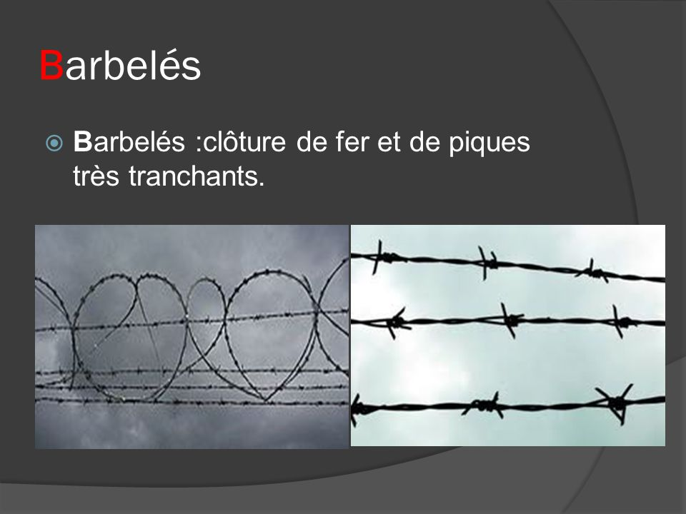 Barbelés Barbelés :clôture de fer et de piques très tranchants.