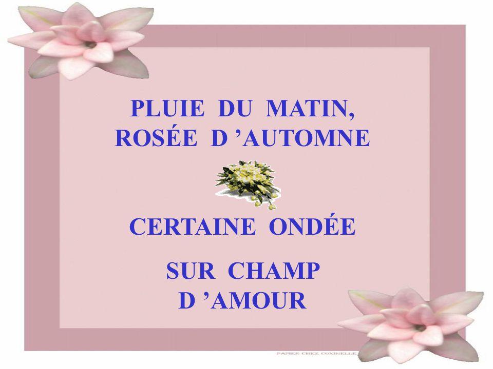 PLUIE DU MATIN, ROSÉE D 'AUTOMNE