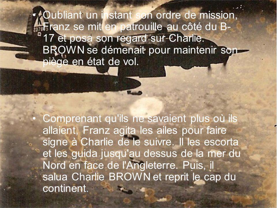 Oubliant un instant son ordre de mission, Franz se mit en patrouille au côté du B-17 et posa son regard sur Charlie. BROWN se démenait pour maintenir son piège en état de vol.