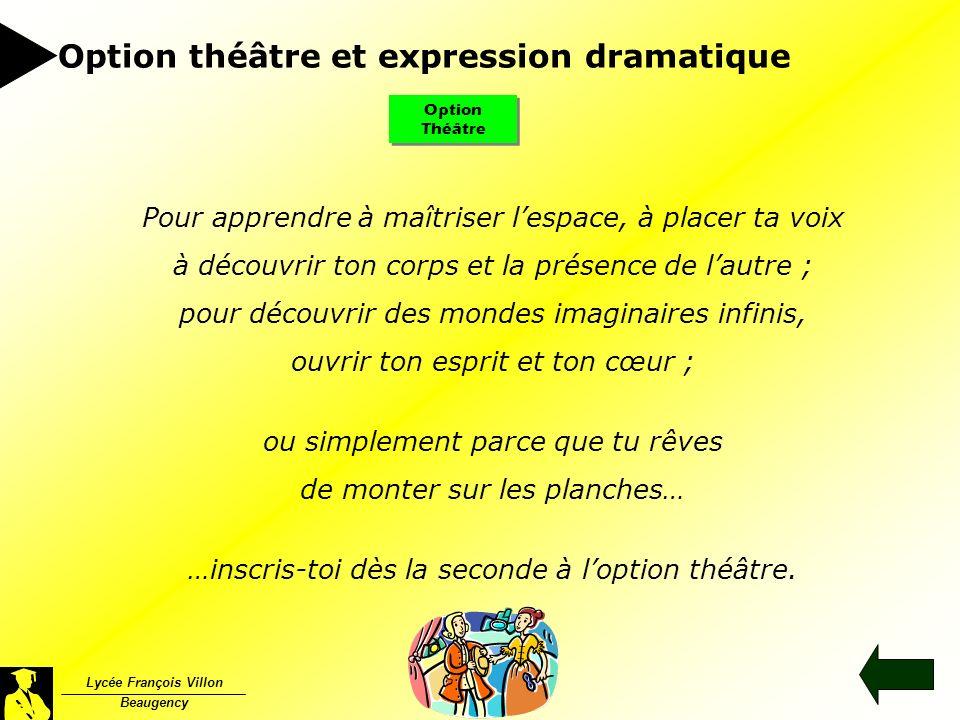 Option théâtre et expression dramatique