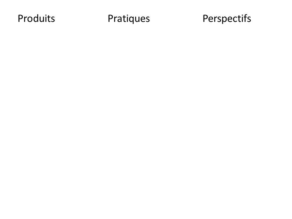 Produits Pratiques Perspectifs