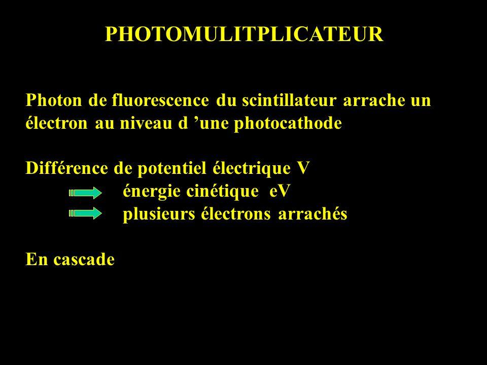 PHOTOMULITPLICATEUR Photon de fluorescence du scintillateur arrache un électron au niveau d 'une photocathode.
