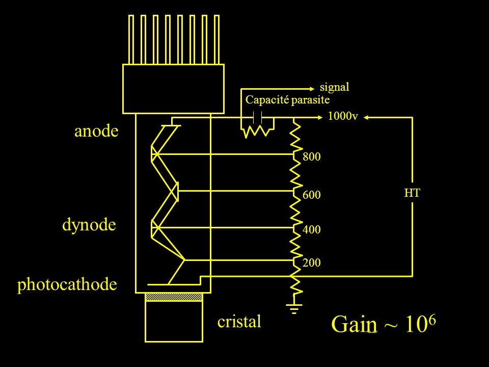 Gain ~ 106 anode dynode photocathode cristal signal Capacité parasite