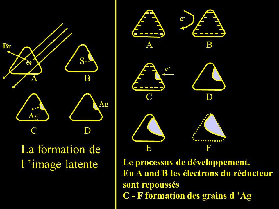 La formation de l 'image latente Le processus de développement.