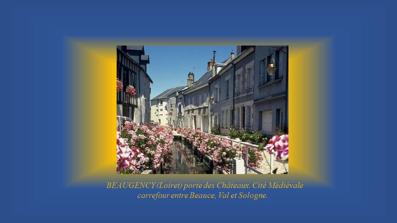 BEAUGENCY (Loiret) porte des Châteaux. Cité Médiévale
