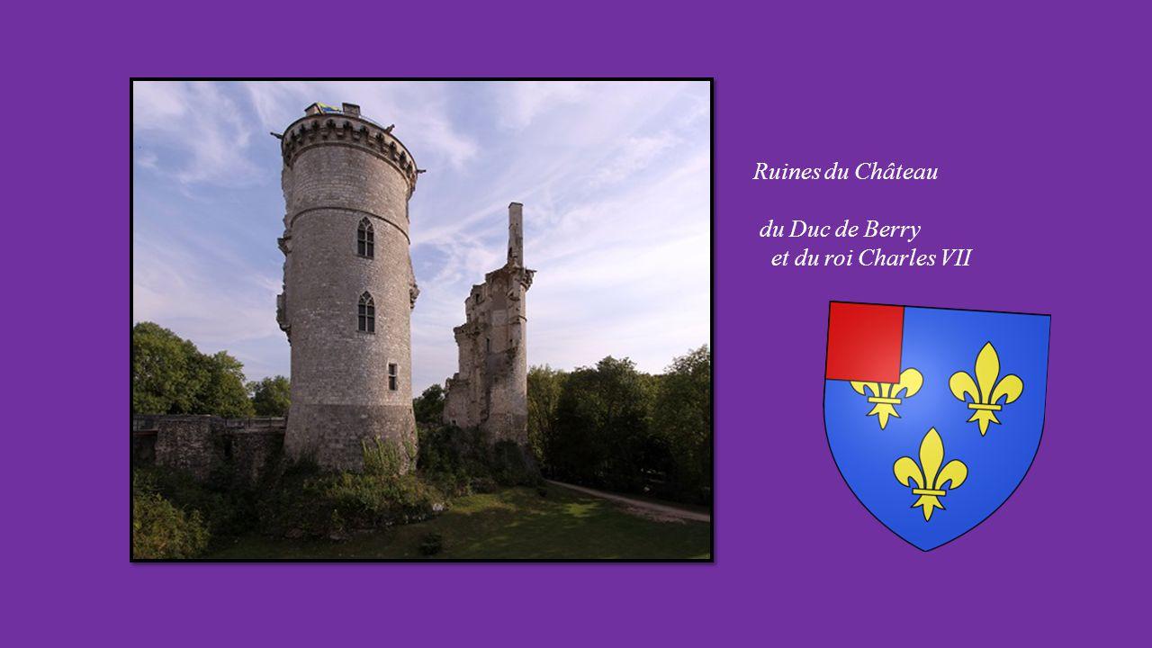 Ruines du Château du Duc de Berry et du roi Charles VII