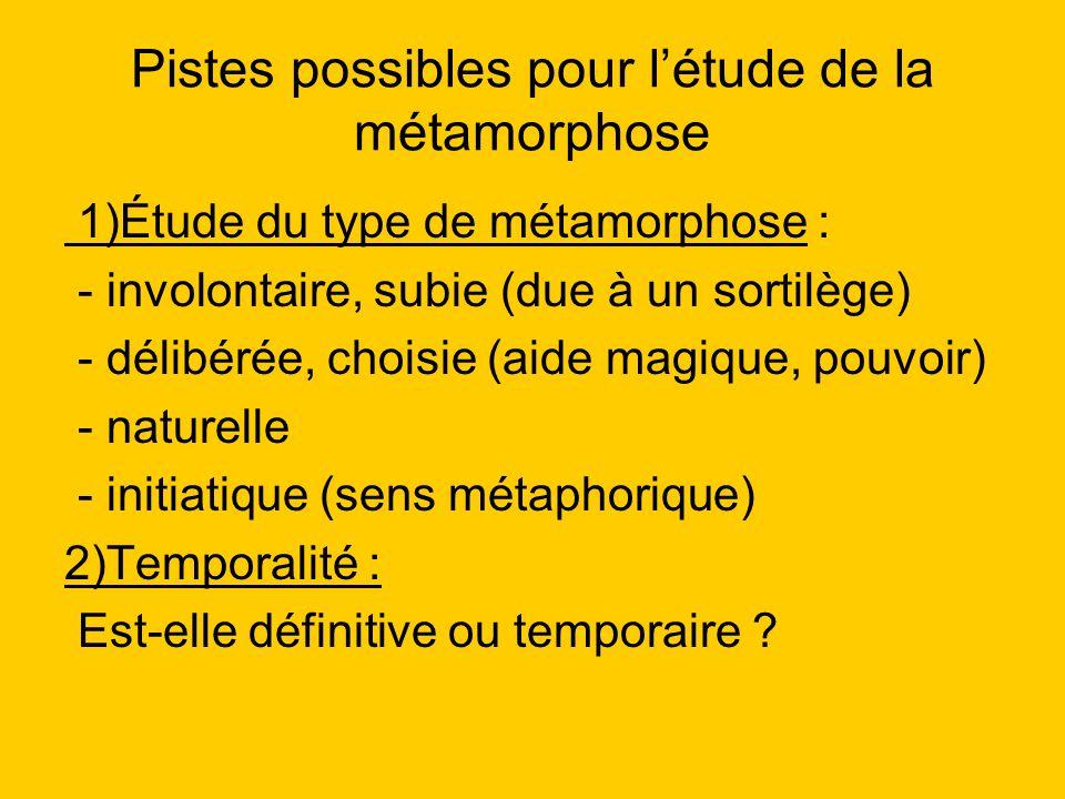 Pistes possibles pour l'étude de la métamorphose