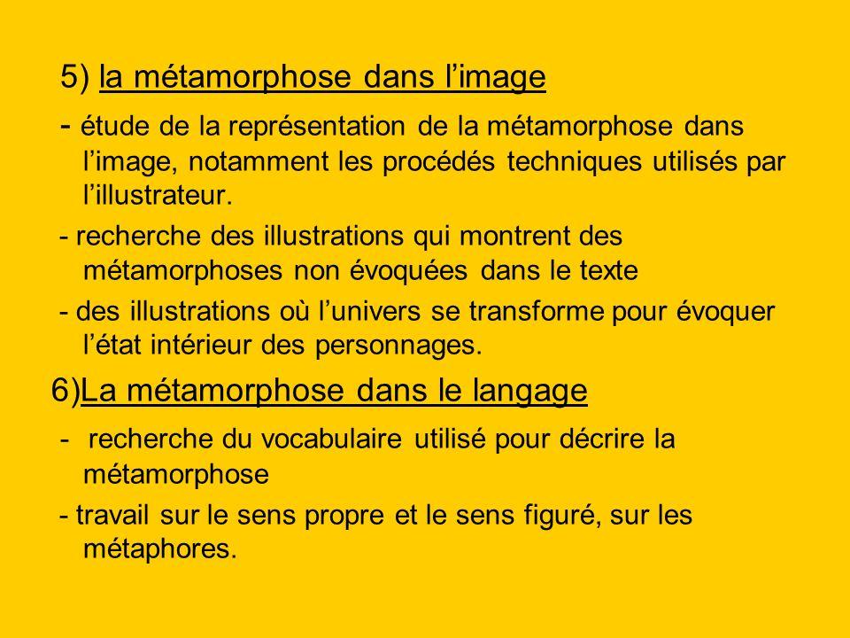 5) la métamorphose dans l'image