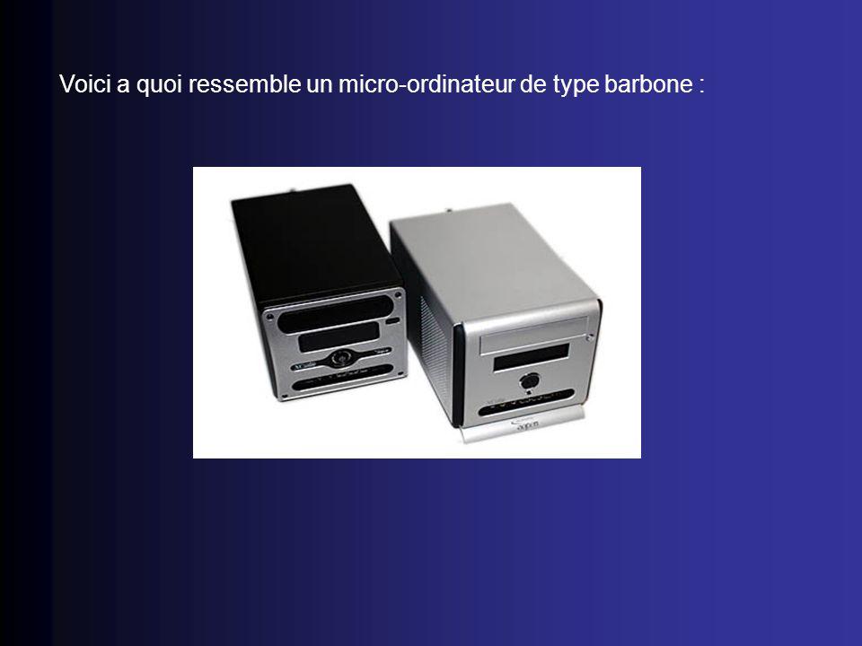 Voici a quoi ressemble un micro-ordinateur de type barbone :