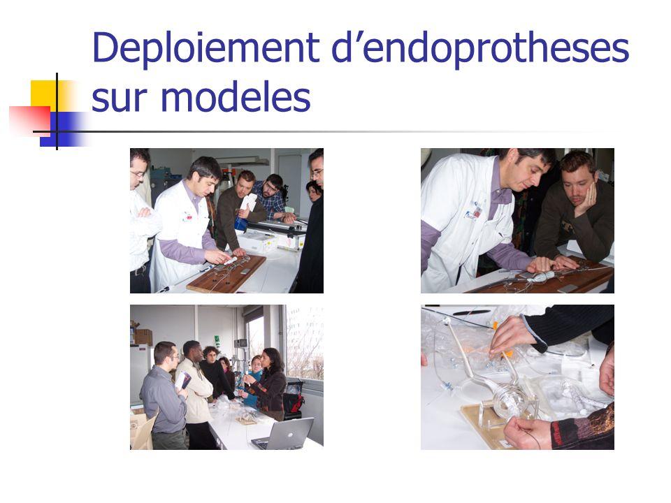 Deploiement d'endoprotheses sur modeles