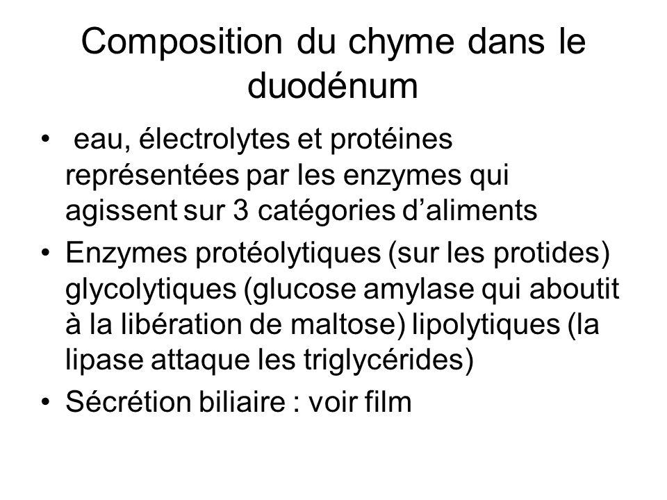 Composition du chyme dans le duodénum
