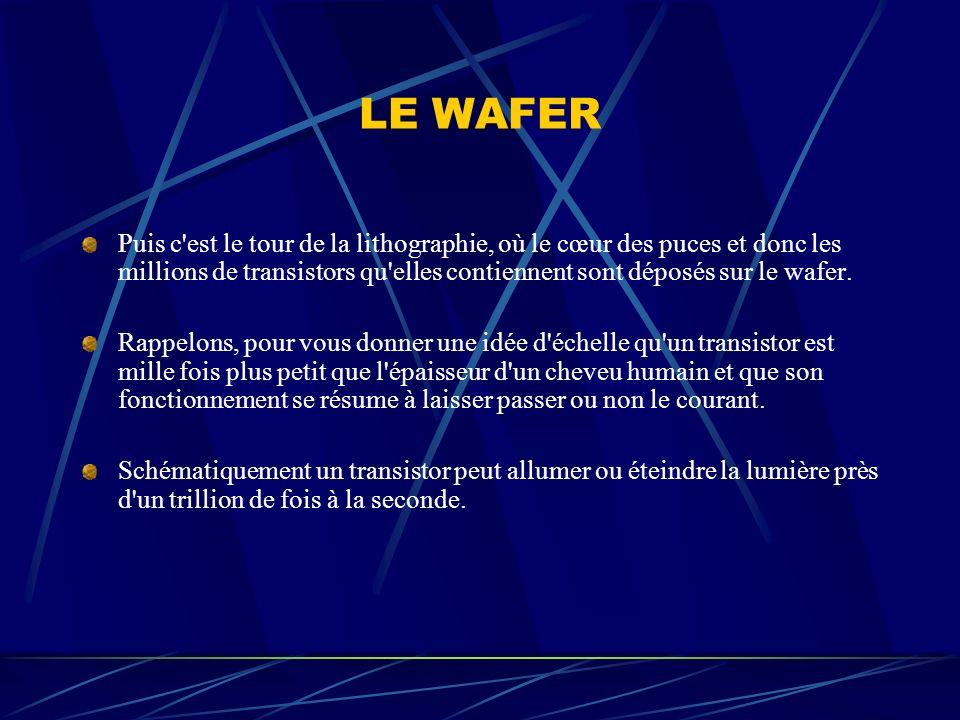 LE WAFER