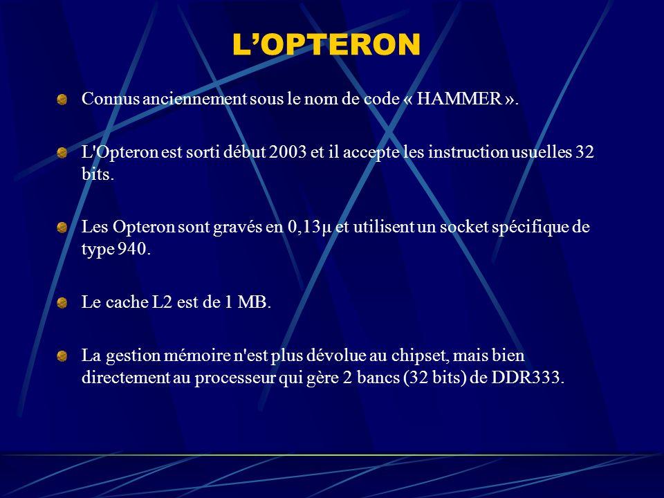 L'OPTERON Connus anciennement sous le nom de code « HAMMER ».