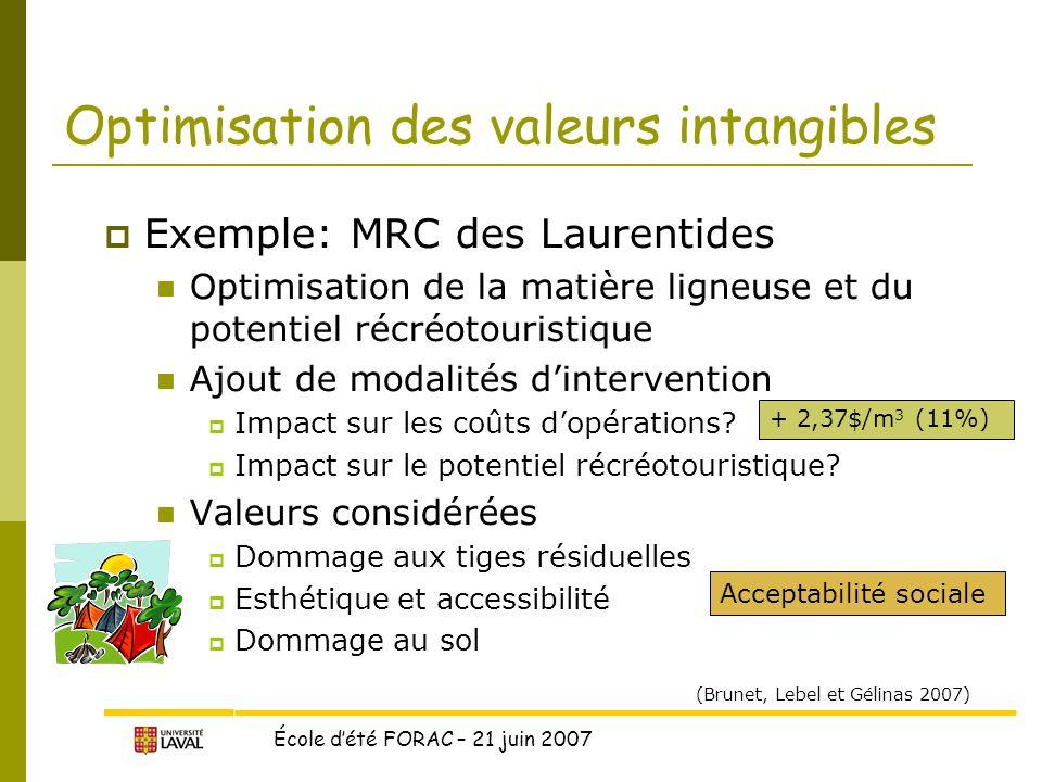 Optimisation des valeurs intangibles