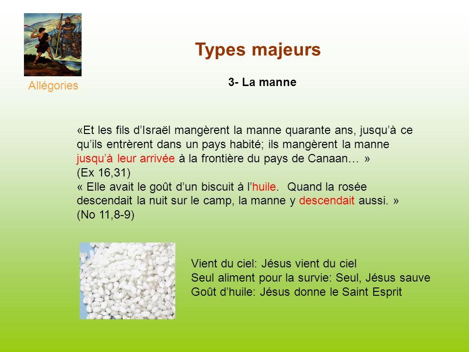 Types majeurs 3- La manne Allégories