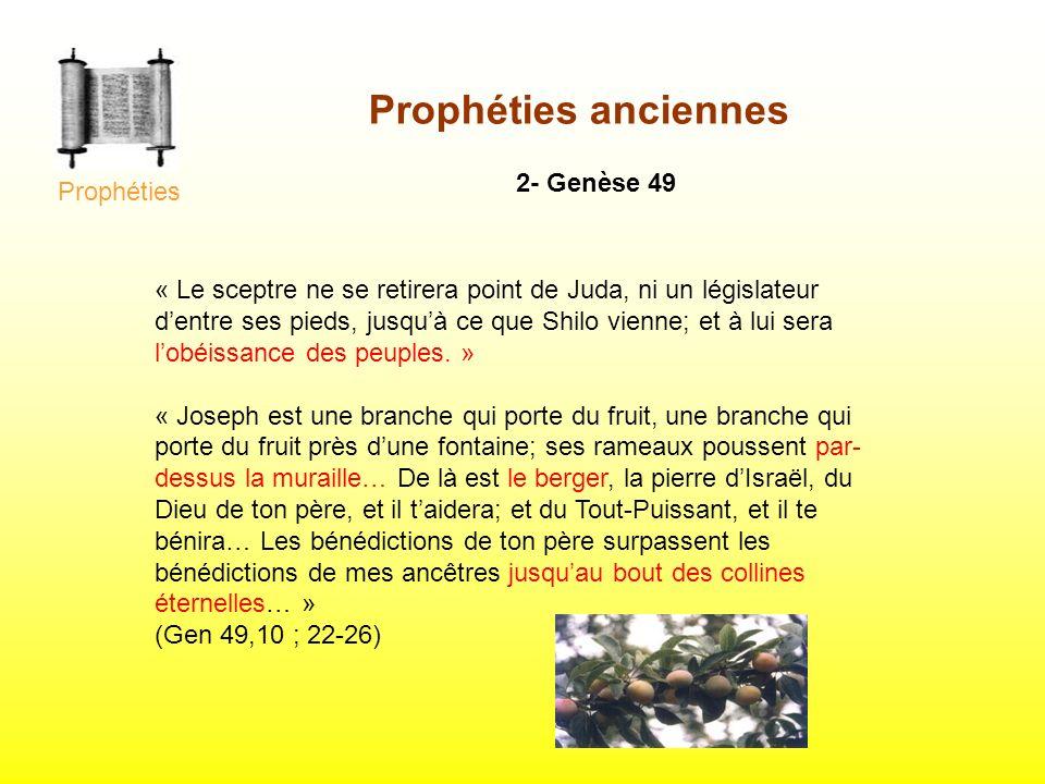 Prophéties anciennes 2- Genèse 49 Prophéties