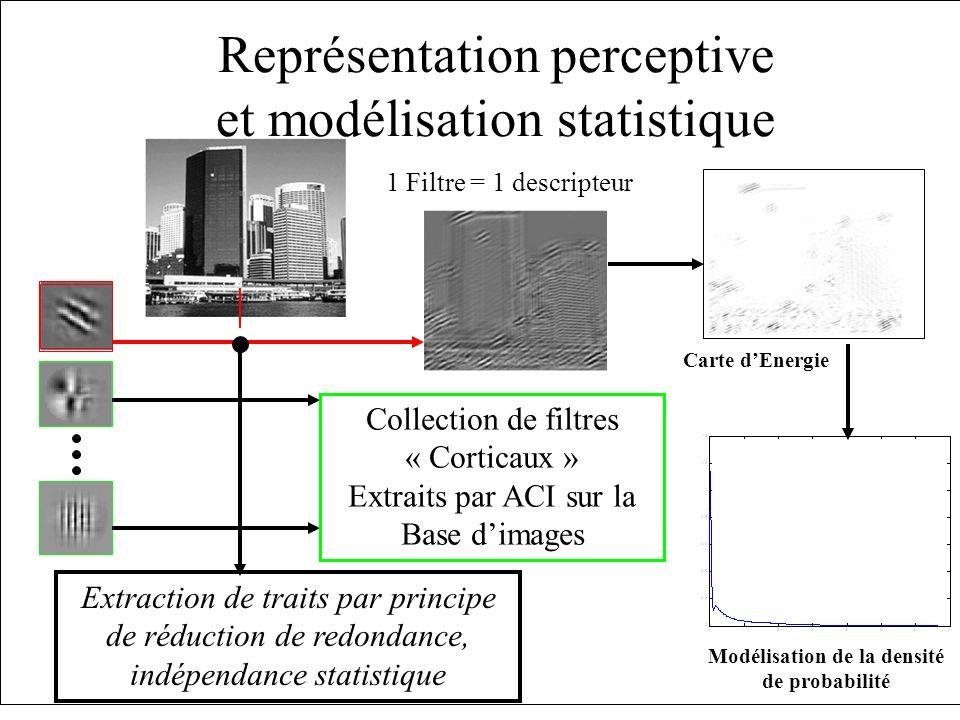 Modélisation de la densité de probabilité