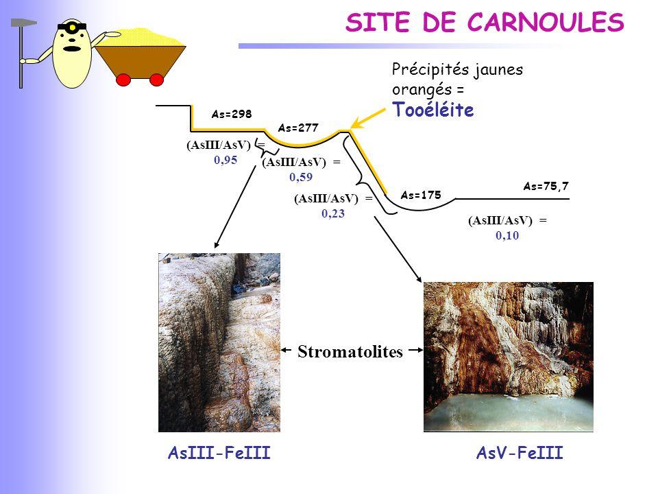 SITE DE CARNOULES Tooéléite Stromatolites AsIII-FeIII AsV-FeIII