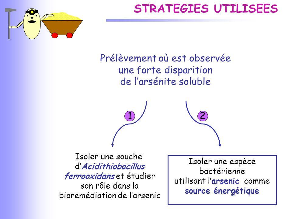 STRATEGIES UTILISEES 1 Prélèvement où est observée