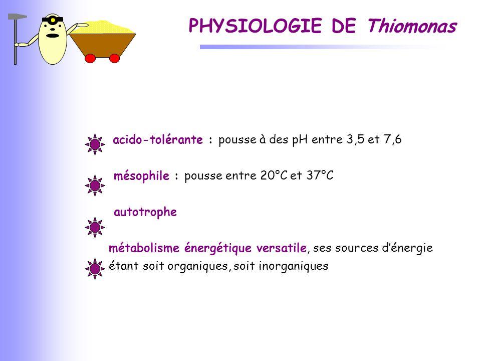 PHYSIOLOGIE DE Thiomonas