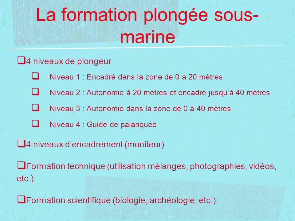 La formation plongée sous-marine