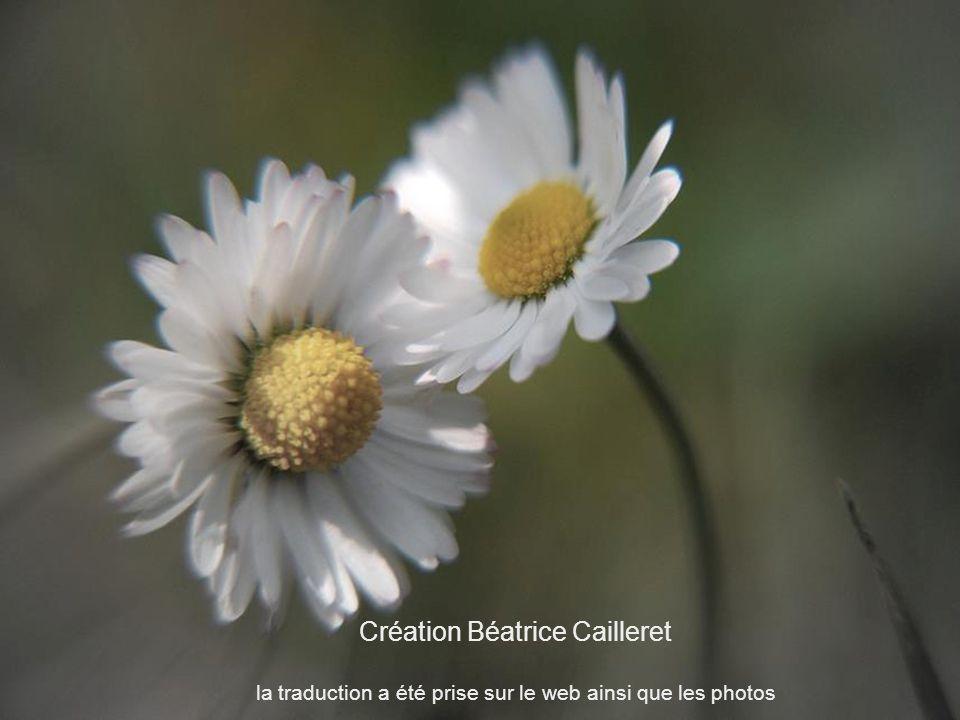 Création Béatrice Cailleret la traduction a été prise sur le web ainsi que les photos