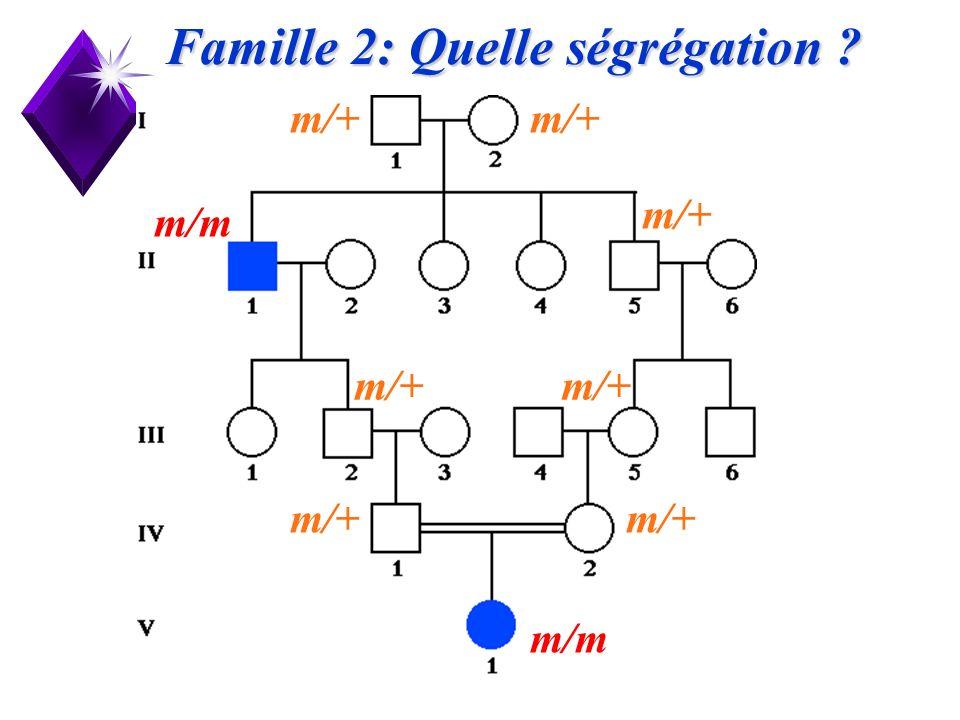Famille 2: Quelle ségrégation