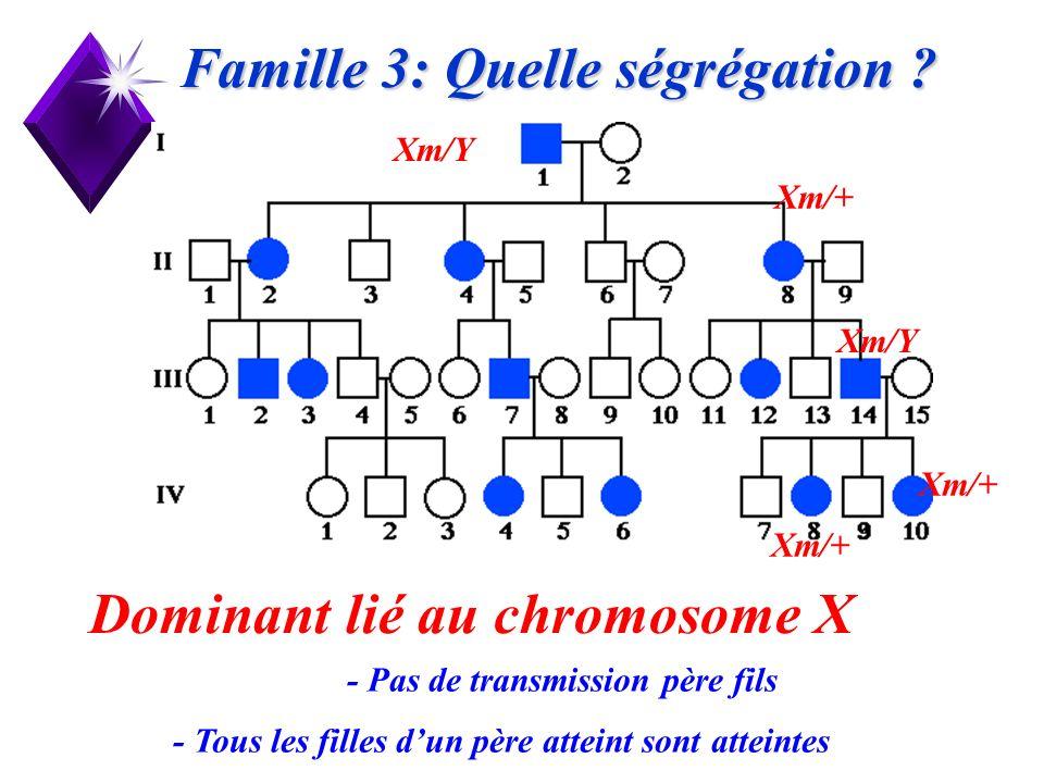 Famille 3: Quelle ségrégation
