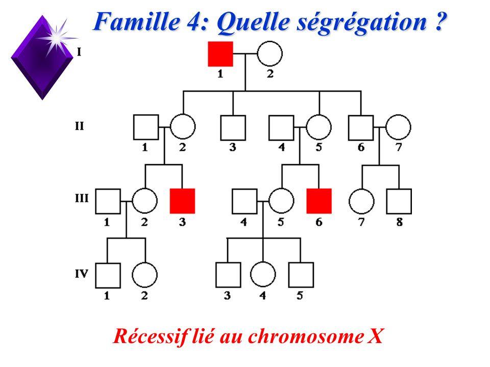 Famille 4: Quelle ségrégation