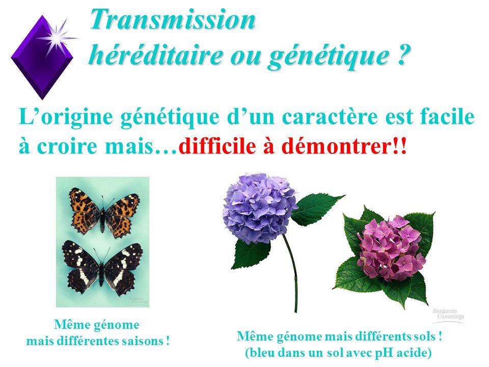Transmission héréditaire ou génétique