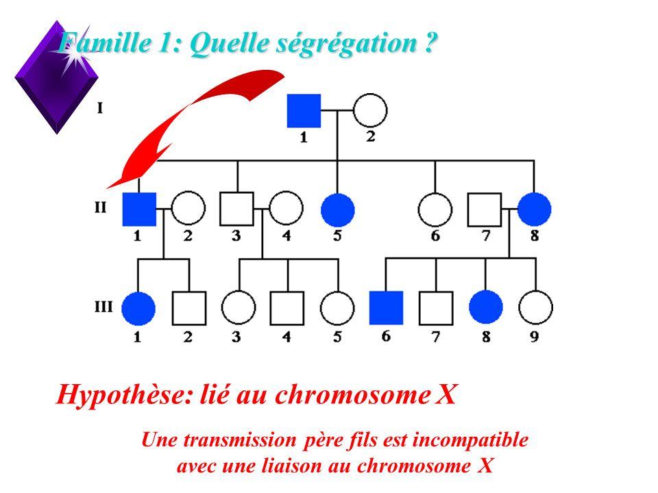 Famille 1: Quelle ségrégation