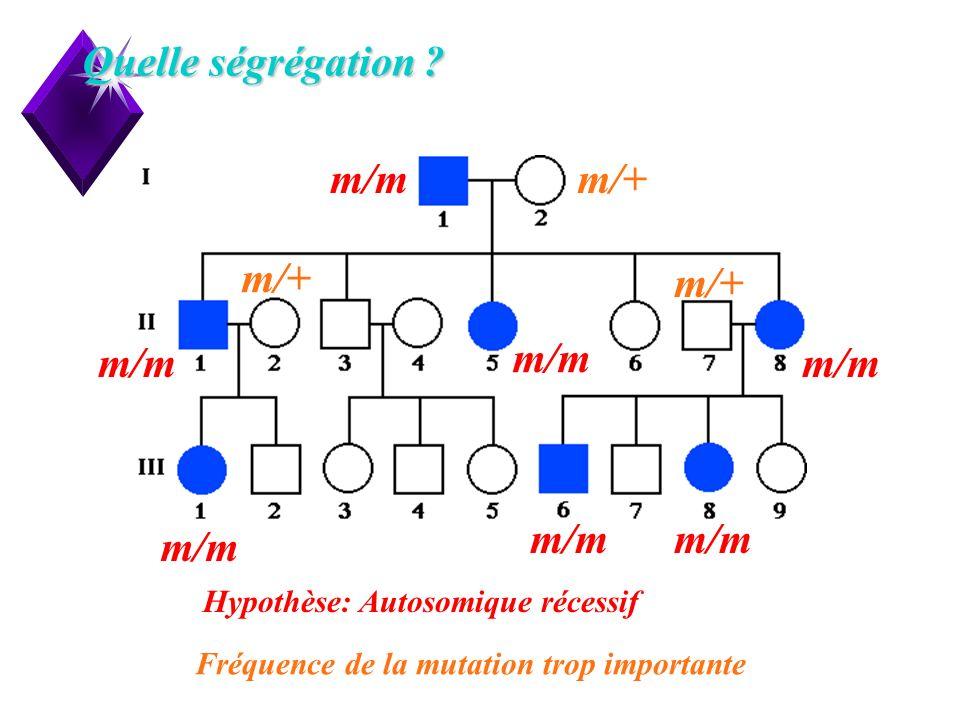 Quelle ségrégation m/+ m/m Hypothèse: Autosomique récessif