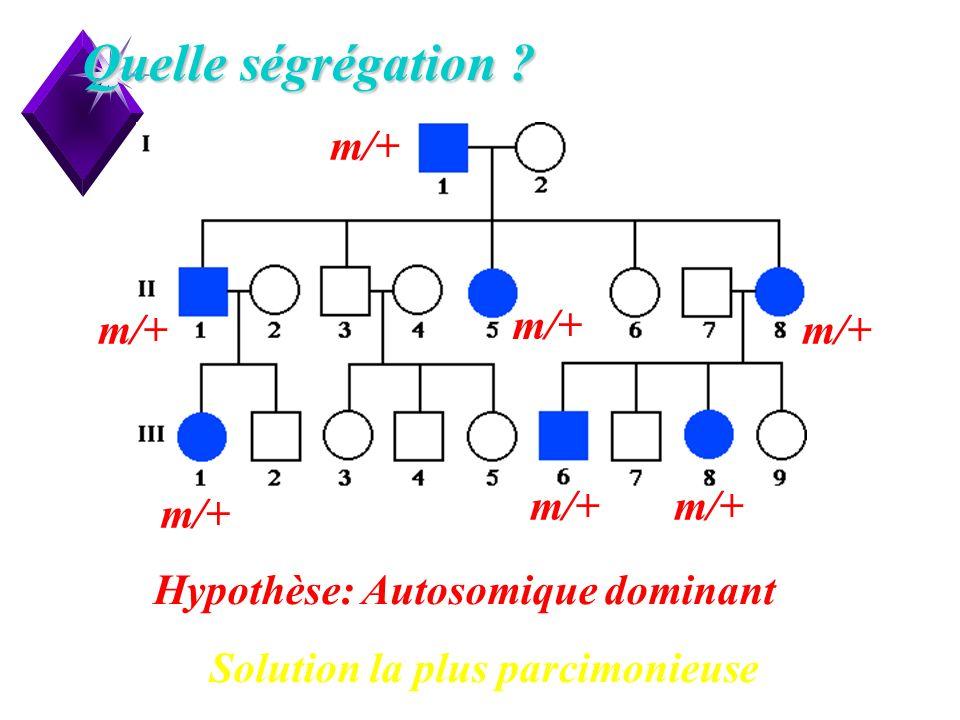 Quelle ségrégation m/+ Hypothèse: Autosomique dominant