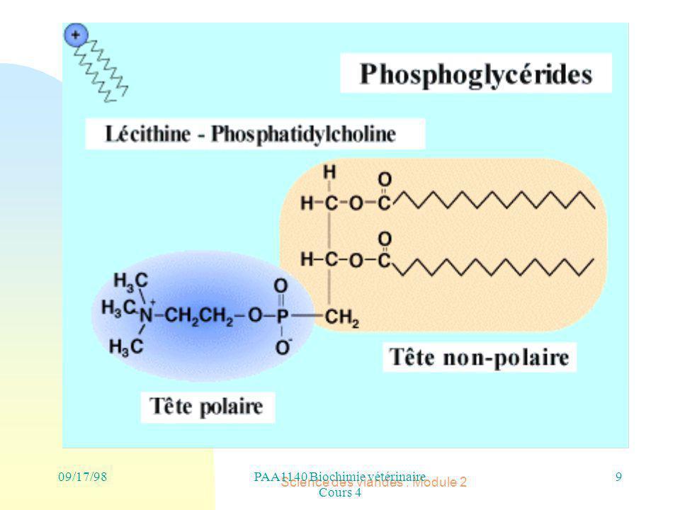 PAA1140 Biochimie vétérinaire Cours 4 Science des viandes : Module 2 9