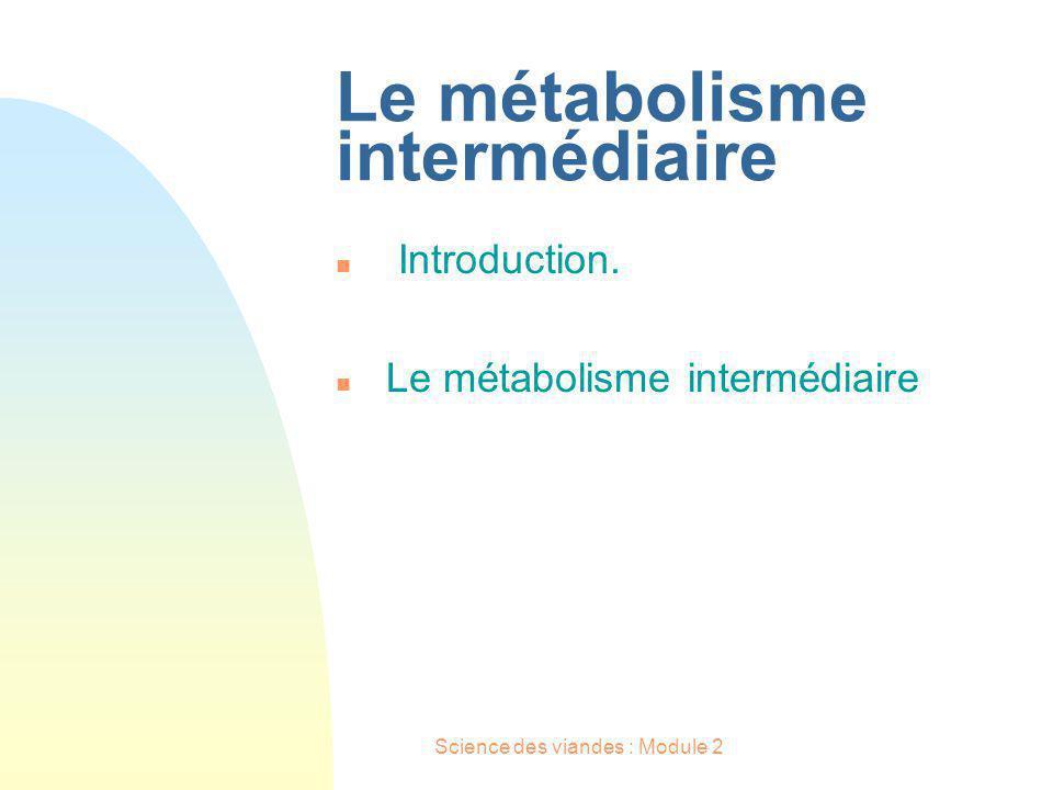 Le métabolisme intermédiaire