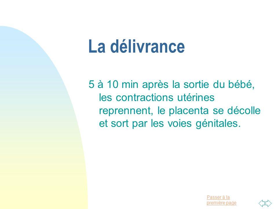 La délivrance5 à 10 min après la sortie du bébé, les contractions utérines reprennent, le placenta se décolle et sort par les voies génitales.